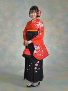 二尺袖093朱赤綸子コスモス桜×袴002グリーン